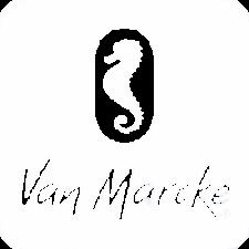Biennale Interieur - Belgium's leading design and interior event - Van marcke logo 3